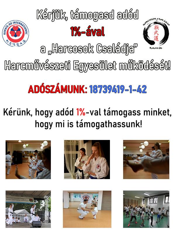 KARATE_ADO_TAMOGASS_MINKET_18739419-1-42