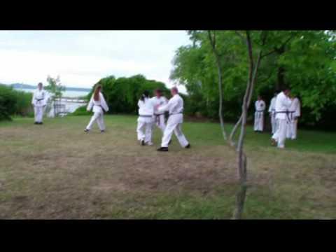 Karatevizsga 2011