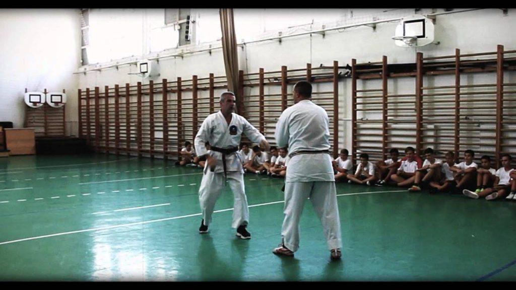 Bemutatkozik a Karate-Do International Harcosok Családja