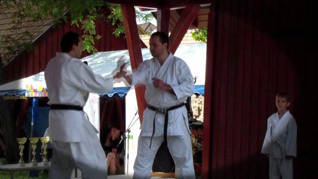 Karate bemutató 2012